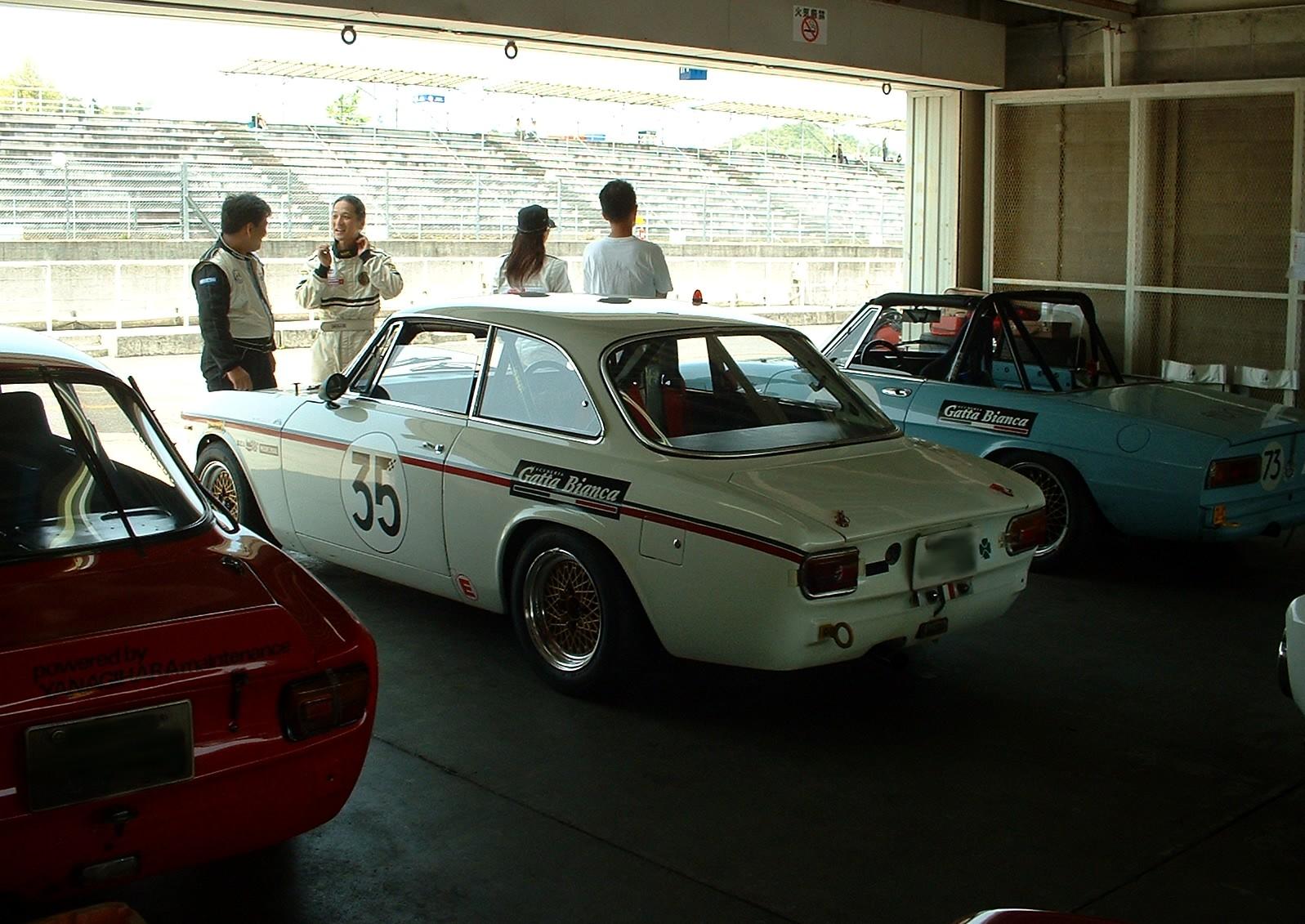 Gattabianca352008