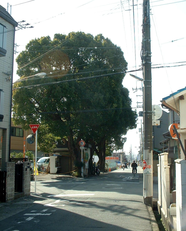 Saigokukaido2