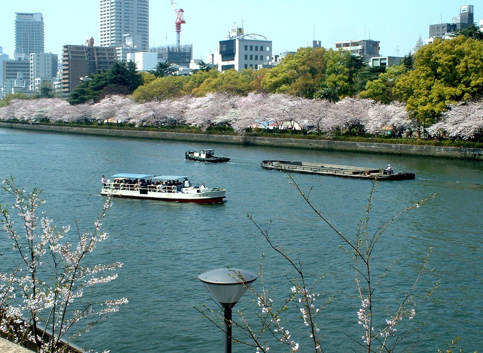 Sakura2009