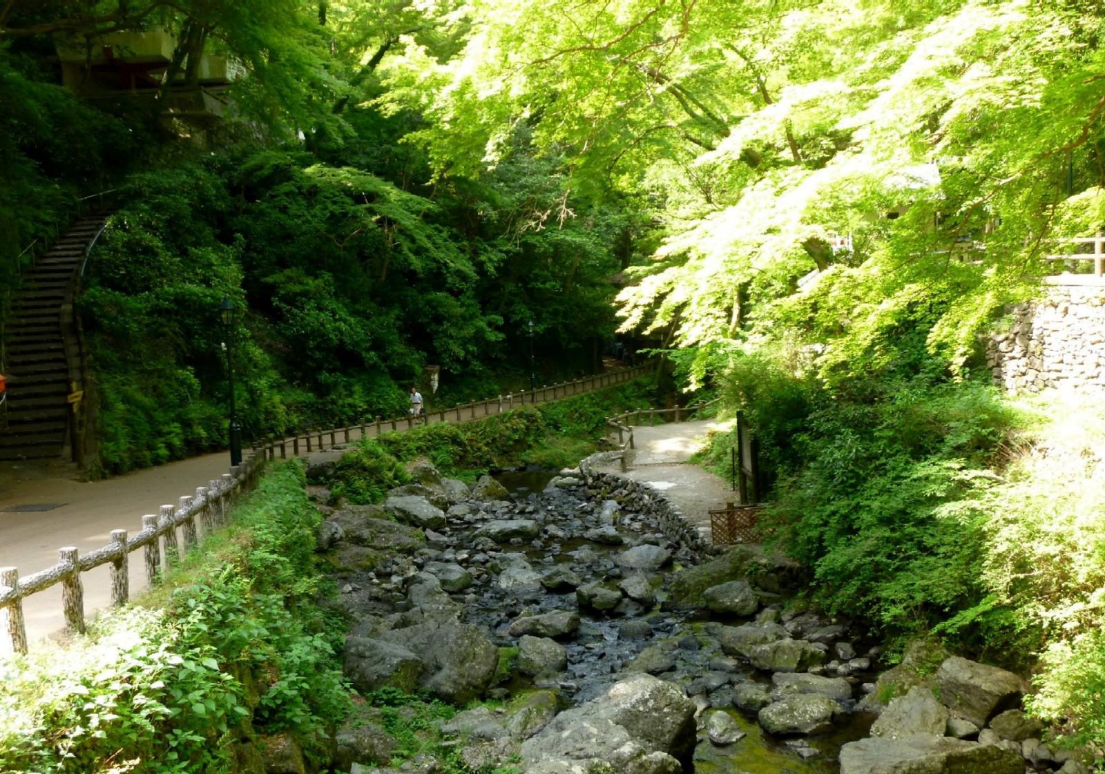 Takimichi2